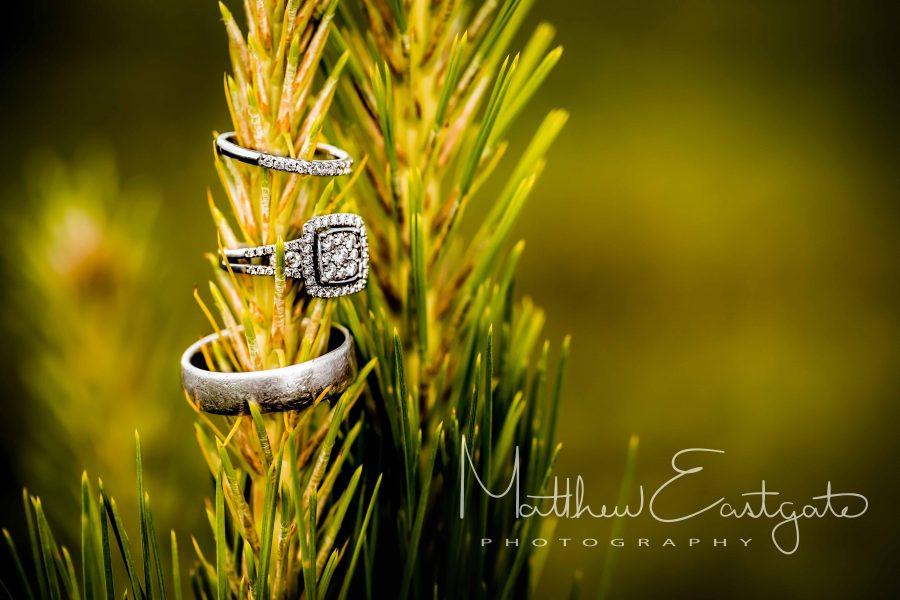 Matthew Eastgate Photography